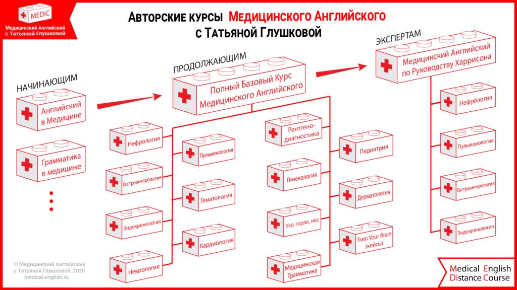 Структура курсов Медицинского Английского
